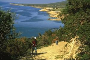 Halbinsel_Akamas, Zypern_Foto-Dagmar Gehm