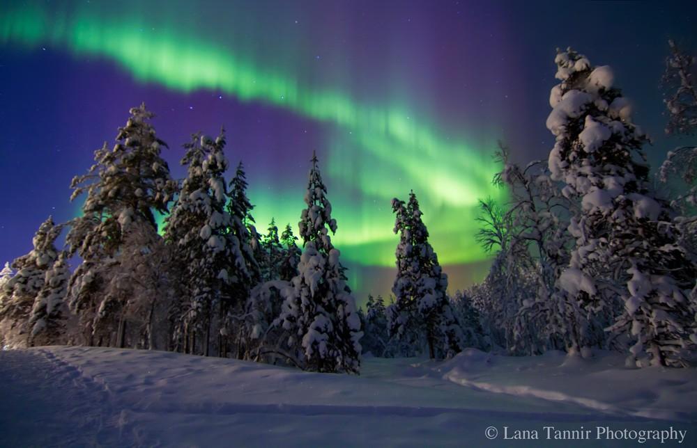 Die eindrucksvollste Polarlicht-Sichtung während des Aufenthalts in Saariselkä.