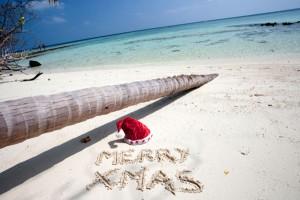 Weihnachten unter Palmen ist eine ganz neue Erfahrung.Foto: © istock.com/ photovideostock