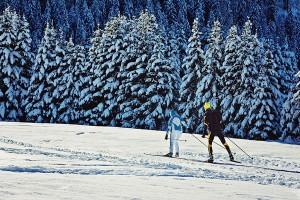 Langläufer kommen rund um Leogang voll auf ihre Kosten. - Foto: mk Schenkenfelder