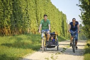 Die Hallertauer Hopfentour führt - natürlich - auch zu Hopfengärten. - Foto: Hopfenland Hallertau Tourismus/Anton Mirwald