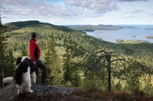 Malerische Landschaften bieten die insgesamt sieben Nationalparks an der finnischen Küstenregion. Foto: www.visitfinland.de