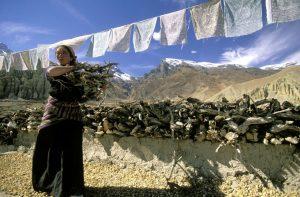 Gebetsfahnen sind heute im Buddhismus übliche Fahnen in meist kleiner rechteckiger Form. Sie werden von den Gläubigen bis zur vollständigen Verwitterung dem Wind ausgesetzt, damit nach ihrer Überzeugung die Gebete dem Himmel zugetragen werden. Foto: Gebeco.