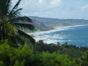 Karibikfeeling: Das Natur- und Surferparadies Bathsheba.