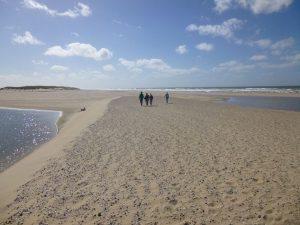 Die Strände von Texel sind alle auf der Westseite der Insel. Insgesamt ist der Strand ca. 30 km lang. Man kann wählen: den Lieblingsabschnitt von De Koog mit viel Trubel bis zu dem Frieden und der Weite in De Hors an der Südspitze.