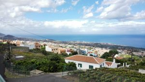 Blick auf Puerto de la Cruz.