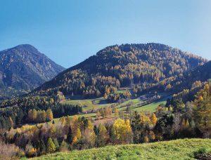 Mit seinen knapp 6900 Hektar ist der Naturpark Trudner Horn – hier die Rentschwiesen - der Zweitkleinste. - Foto: NP Trudner Horn