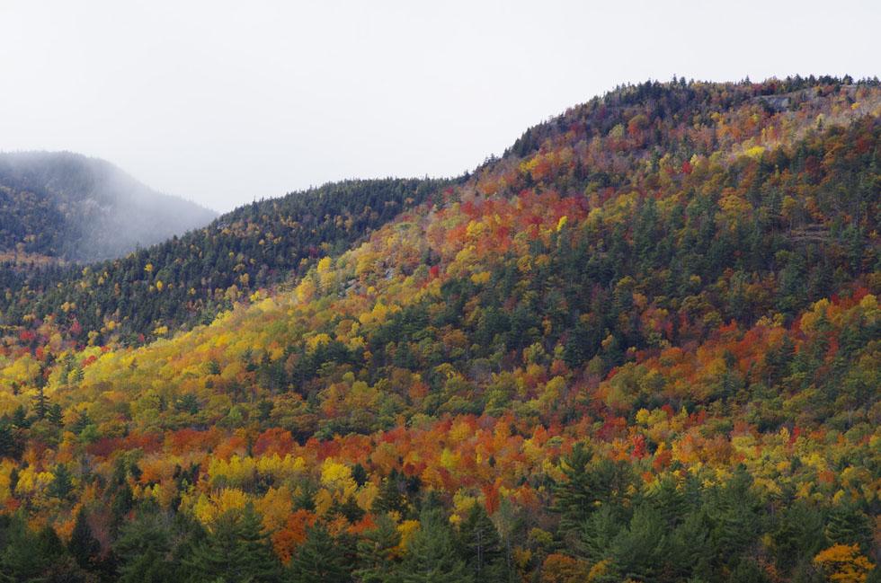 Herbstfarbenrausch in den Adirondack Mountains im Bundesstaat New York. Die Herbstlaubverfärbung im Oktober wird als Fall Foliage bezeichnet.