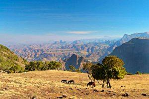 Wer eine Trekking-Reise durch Äthiopien unternimmt, wird von der Landschaft restlos begeistert sein. - Foto: Evaneos