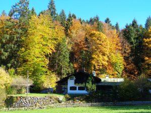 Der Herbst bietet ein richtiggehendes Farbspektakel. - Foto: Dieter Warnick