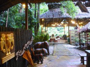 Idyll im Regenwald: Das Elephant Hills Camp. – Foto: Anke Sieker