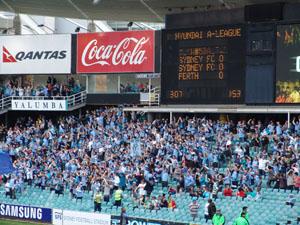 The Cove: Hier stehen die eingefleischten Fans des FC Sydney.