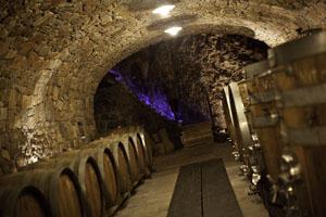 In großen, schweren Holzfässern reifen die schmackhaften friulischen Weine. Foto: Alessandro Castiglioni