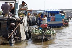 Handel über die Reeling: Ananas wechseln den Besitzer.