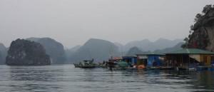 Einstige Seenomaden sind in der Ha Long-Bucht sesshaft geworden - nicht ganz freiwillig allerdings, die Regierung musste nachhelfen.