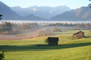 Im Murnauer Moos kann man Naturverbundenheit neu kennenlernen. Foto: Tourist-Info Murnau