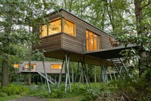 Im Grünen: Baumhaushotels wie das Resort Baumgeflüster. Foto: Baumgeflüster