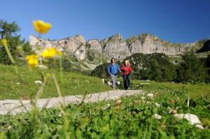 Wer wandern will, findet im nahegelegenen Karwendel- und Rofangebirge jede Menge an markierten Wegen.