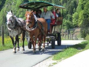 Kutschfahrten sind beliebt bei alt und jung. - Foto: Dieter Warnick
