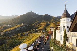 Dorf Tirol ist eines der ältesten Weinbaugebiete Südtirols. - Foto: Tourismusverein Dorf Tirol/Frieder Blickle