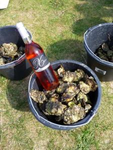 den kommenden Wochen ist wieder Austernschlemmen im Nationalpark Dänisches Wattenmeer angesagt. - Foto: Reiner Büchtmann