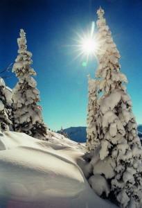 Der Winterwanderweg auf dem Neunerköpfle im Tannheimer Tal führt durch unberührte Winterlandschaften. - Foto: Tourismusverband Tannheimer Tal