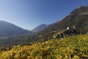 Die Berge prägen das Meraner Land wie ganz Südtirol. Foto: Suedtirol Marketing GmbH