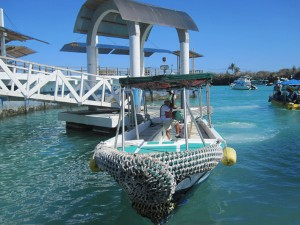 Mit kleinen Booten lassen sich Touristen und Wissenschaftler gerne herumschippern.
