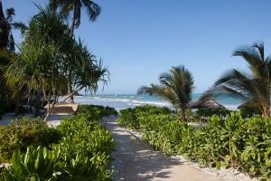 Auf Sansibar: Schon der Weg von den geschmackvollen Bungalows zum Strand ist einmalig. - Foto: GREEN AND BLUE Zanzibar Ocean Lodge
