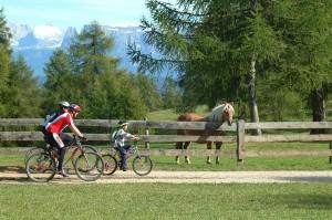 Auf dem Tschögglberg kommen Radfahrer voll auf ihre Kosten. - Foto: Tourismusverein Jenesien
