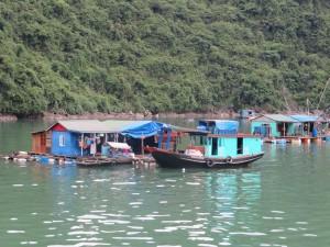 Zwischen den steil aus den Wasser ragenden Kalksteinfelsen leben und wohnen auch Vietnamesen und gehen einer Beschäftigung jenseits des Tourismus nach.