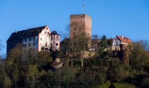 Im 12. Jahrhundert war die Gamburg Lehen der mächtigen Edelfreien von Gamburg und ist heute Nationaldenkmal. - Foto: Goswin v. Mallinckrodt