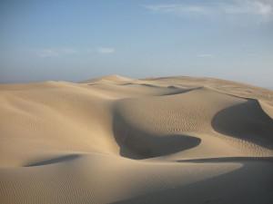 Die Desierto de California liegt unweit der Pazifikküste im Reserva Nacional de Paracas, einem Naturschutzgebiet mit großer Artenvielfalt.