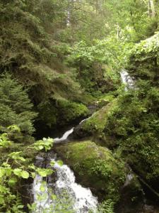 Ein Wasserfall als Belohnung und Ziel einer Schwarzwald-Wanderung. Foto: privat