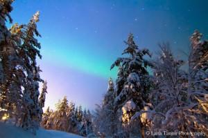 Der Sonnenaufgang im Urho Kekkonen Nationalpark in Saariselkä konkurriert mit den glühenden Polarlichtern.
