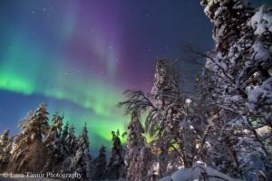Polarlichter kommen in verschieden Farben vor, die mit dem bloßen Auge oft nicht zu beobachten sind.