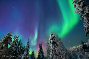 Das Spiel der Polarlichter auf dem wolkenlosen Himmel im Urho Kekkonen Nationalpark.