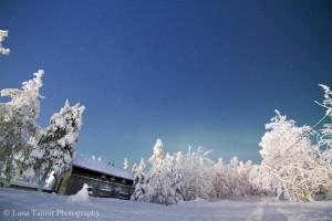 Einsame Häuser am Waldrand sind in Saariselkä eine häufige Erscheinung.
