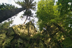 Das Höllental macht seinem Namen alle Ehre. - Foto: Frankenwald Tourismus