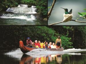 Suriname ist als Urlaubsziel noch weitgehend unbekannt. Es gibt jede Menge zu entdecken. - Foto: noble kommunikation