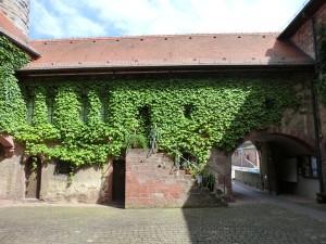 In Külsheim können die Köstlichkeiten des Taubertals genossen werden. - Foto: Dieter Warnick