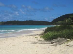Wenn man den Mangrovenwald überwunden hat, erreicht man einen menschenleeren, herrlichen Strand.
