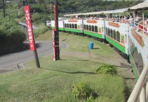 Mit dem Sugar Train, der einst den Rohrzucker einsammelte, durch die seit 2005 aufgelassenen Zuckerrohrfelder von St. Kitts. Die roten Schilder an den Masten zeigen, dass Wahlkampf ist um die etwa 40.000 Stimmen auf St. Kitts und Nevis.