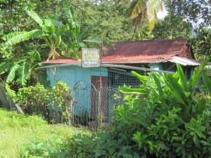 Dieses Geschäftshaus auf Dominica bildet einen extremen Gegensatz zu den Läden von Hermes oder Bulgari auf St. Barth und es zeigt die krassen Unterschiede, die zwischen den Inseln der Kleinen Antillen existieren.