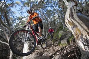 Mountainbiker kommen am Mount Buller voll auf ihre Kosten. - noble kommunikation GmbH