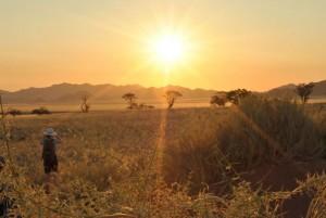 Sonnenaufgang in Namibia. Foto: meine-kartenmanufaktur.de