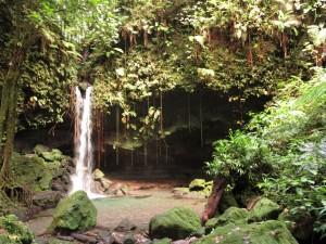 Dominica - strotzend grüne Regenwälder und unzählige Wasserfälle.
