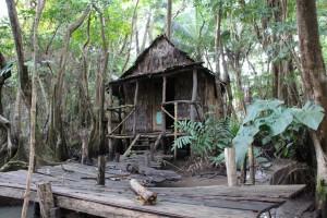 Mit dem Boot über den Indian River – auf den Spuren der Piraten aus Fluch der Karibik II. Die (nachgebaute) Hütte von Tia Dalma/Calypso am Indian River. Der Trip lohnt sich auch, wenn man kein Fan des Blockbusters ist.