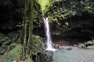 Die Natur scheint zu explodieren auf Dominica!