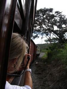 """Eine Zugfahrt mit dem Tren da la Liberdad, der """"schwierigsten Bahnstrecke der Welt"""", ist ein unvergessliches Erlebnis."""